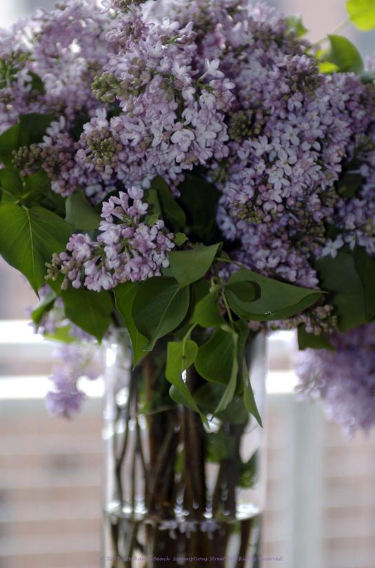 Lilacs_vase
