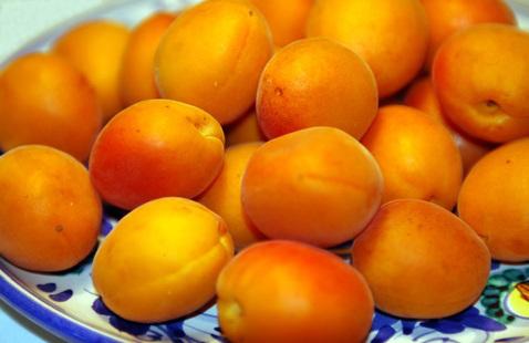 Apricots_best