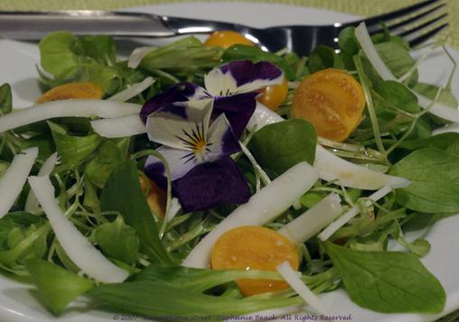 Mache_salad_2
