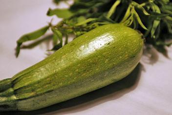 Whole_squash_herbs_1